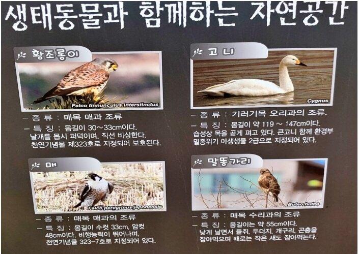 Ecological Park-wild-animals