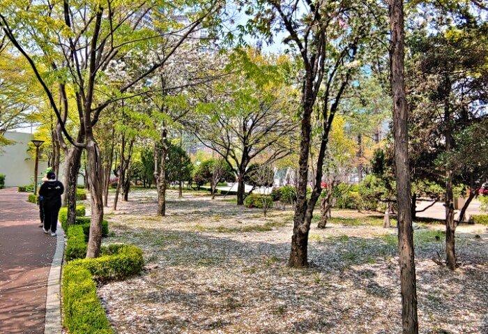 Seoul-Ankara-Park