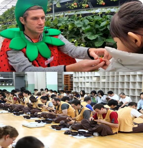 Korea-international-school-travel